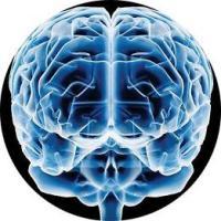 Dpensamiento, leer, cabeza, tecnica, experimento